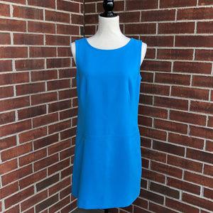 LOFT Mod Shift Dress